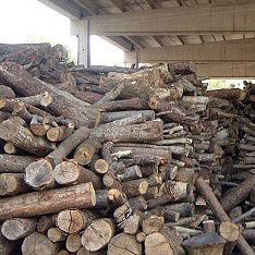 Vendita online legna da ardere